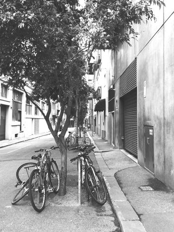 Melbourne Laneways Melbourne Monochrome Bicycle Streetphotography Streetphoto_bw Blackandwhite Seemelbourne Open Edit Check This Out