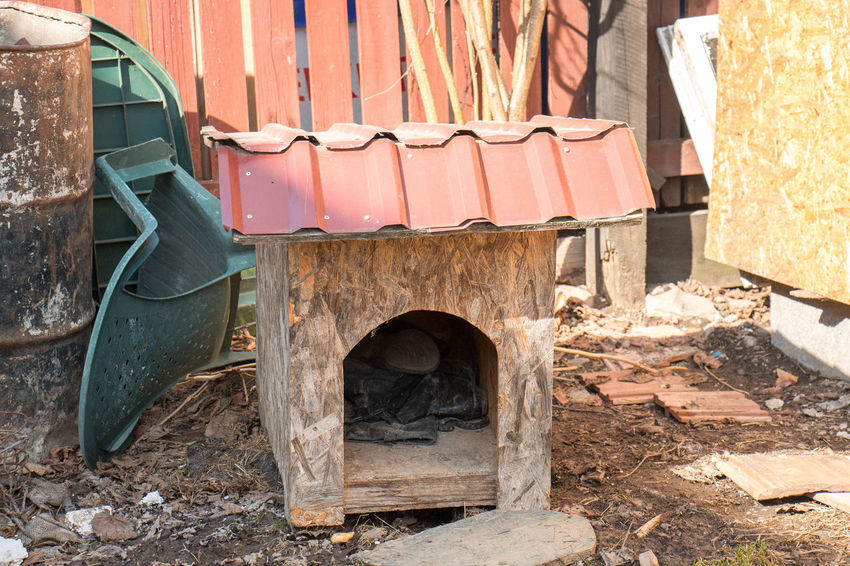 Dog House Day No People Nature Outdoors Architecture Old Built Structure High Angle View Seat Abandoned Land Chair Large Group Of Objects Damaged Transportation Wood - Material Decline Obsolete Dirt Absence