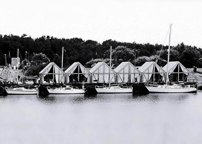 Yacht Yachts