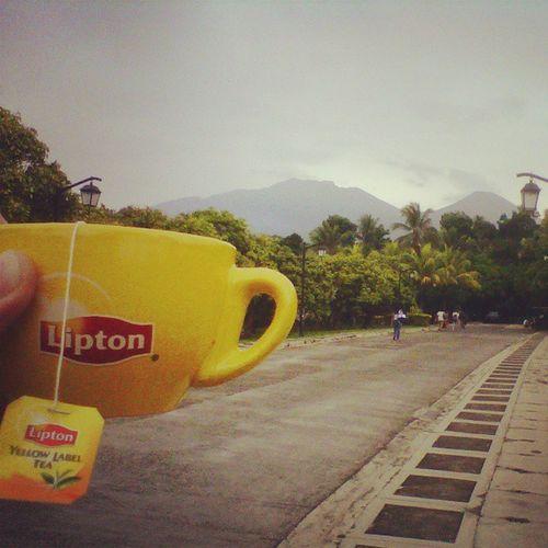 Teacup wants to climb BundokBanahaw Ilovewellness Drinkpositive