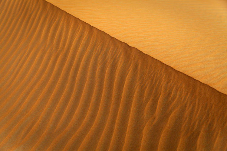 Sand pattern in Empty Quarter desert, UAE Abu Dhabi Desert UAE Abudhabi Arid Climate Backgrounds Brown Climate Close-up Day Desert Full Frame High Angle View Land Landscape Natural Pattern Nature No People Outdoors Pattern Sand Sand Dune Textured  Wave Pattern