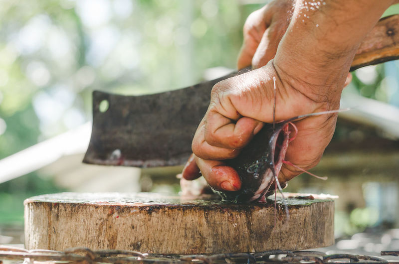 Cropped hands of man cutting fish on table