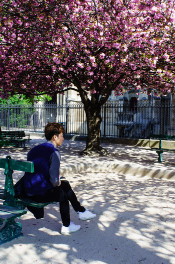 Asianboy Beautiful Day Color Of Spring Colorful Light And Shadow Peace And Quiet Street Photography Streetphotography Treeflowers