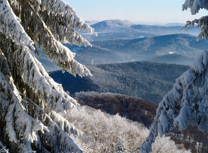 Beauty In Nature Beskidy Cold Temperature Forest High Angle View Idyllic Landscape Majestic Mountain Mountain Range Nature Non-urban Scene Poland Remote Scenics Season  Snow Snowcapped Mountain Space Tourism Travel Travel Destinations Valley Weather Winter