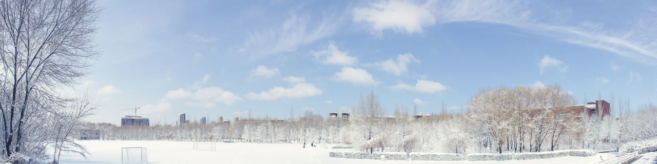 Sky Cold Temperature Winter Snow Outdoors Cloud - Sky Day Tree No People Nature