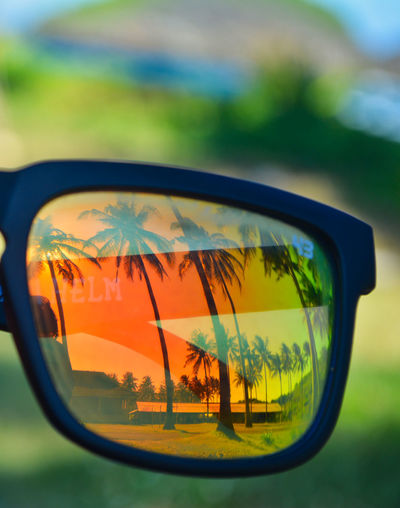 Tour on the Srau Beach. Pacitan, East Java, Indonesia Sunglasses Glasses Reflection Glass - Material Close-up Transparent Focus On Foreground Nature Fashion Day Side-view Mirror Plant No People Car Tree Sky Motor Vehicle Outdoors Land Transportation Personal Accessory Vehicle Mirror Eyewear Nature Beauty In Nature