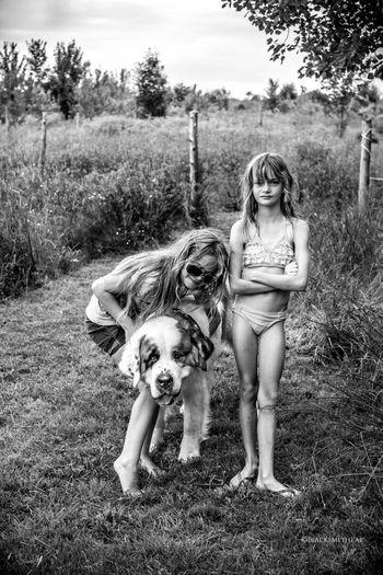 Sam,Gin et Polo. Dog Saintbernard Sherbrooke Portraits EyeEm Best Shots