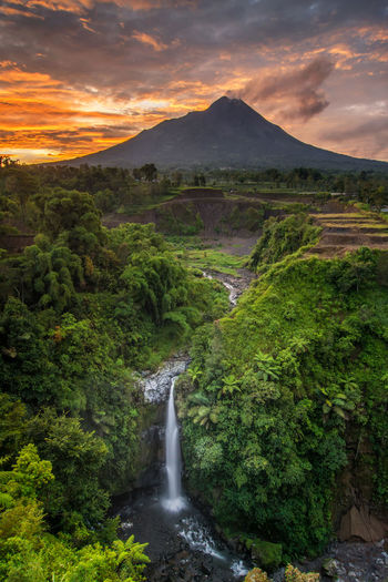 Amazing sunrise view in kedung kayang, magelang Waterfall Sunrise Photography Mountain No People Tranquil Scene Serenity Sky Beauty In Nature Orange Color River Water Plant Scenics - Nature Cloud - Sky Environment Nature Tranquility Land Non-urban Scene Tree Sunset Flowing Water Landscape Green Color Outdoors Flowing Stream - Flowing Water Power In Nature Majestic Stay Out