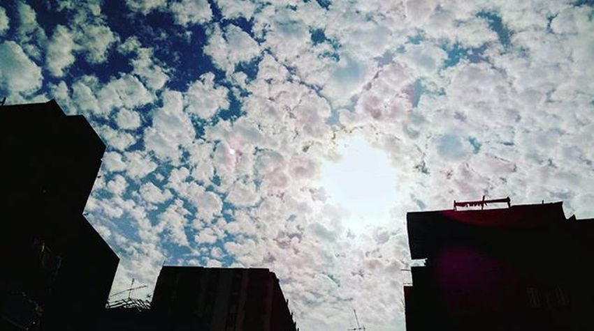 Cotton candies Sky Photographery Mobilephotography Photooftheday