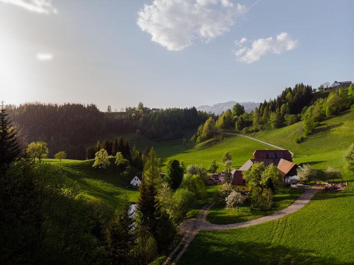 Farmland Drone