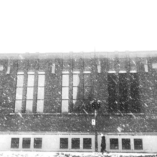XMas Winter Cold Temperature Snow Streetphotography Blackandwhite Bw_collection EyeEm Best Shots - Black + White Streetphoto_bw AMPt Community