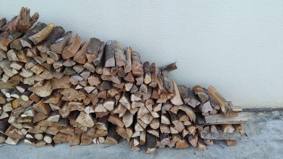 Abundance Timber Wood Log