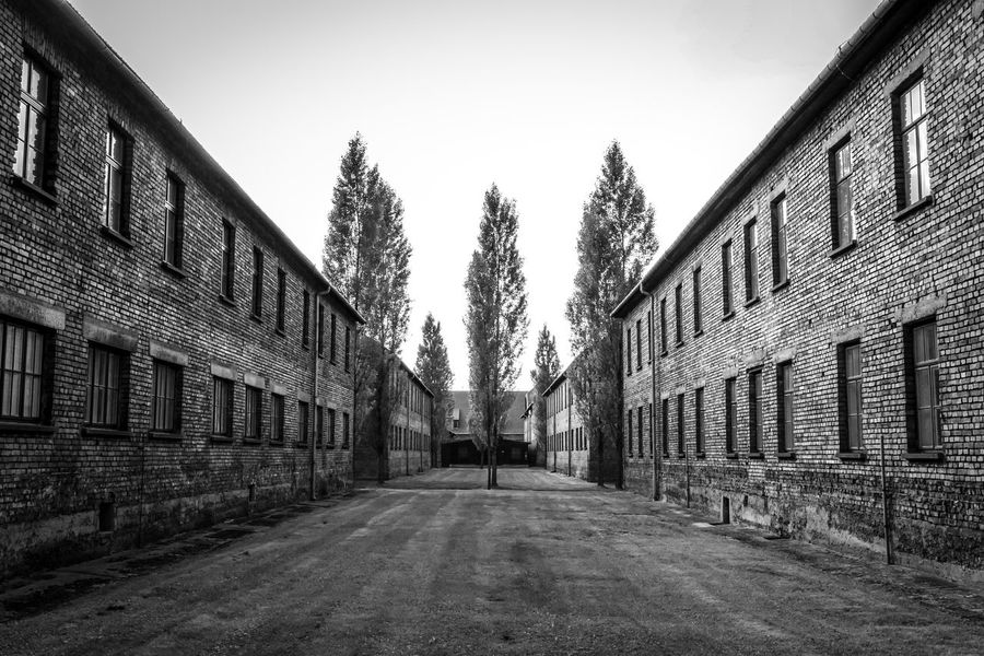 Auschwitz Auschwitz Birkenau Auschwitz  Architecture Built Structure Sky Building Building Exterior The Way Forward Direction No People Day Tree Nature Clear Sky Plant Diminishing Perspective Outdoors City Wall - Building Feature Empty Belief Religion