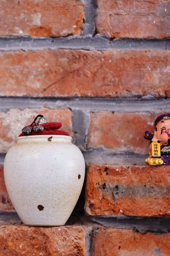 Brick Wall Brick Wall - Building Feature Wall No People Day Built Structure Close-up Architecture Animal Outdoors Animal Themes Brown Pattern Textured  Animals In The Wild Creativity Still Life Art And Craft One Animal