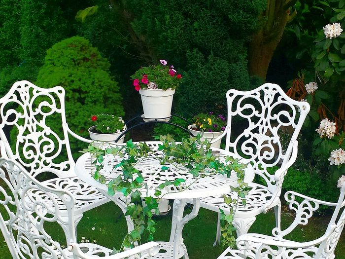 Sitzecke Im Garten Enjoying Life Sublime Living White Metal Chairs And Tables Summerfeeling Ladyphotographerofthemonth Trees And Bushes Zuckerhut Rhododendron White Album White Collection White Colour The White Collection The Essence Of Summer Green Nature Seating Area Garden Seating