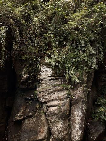 First Eyeem Photo Rock Formation RockPhotography