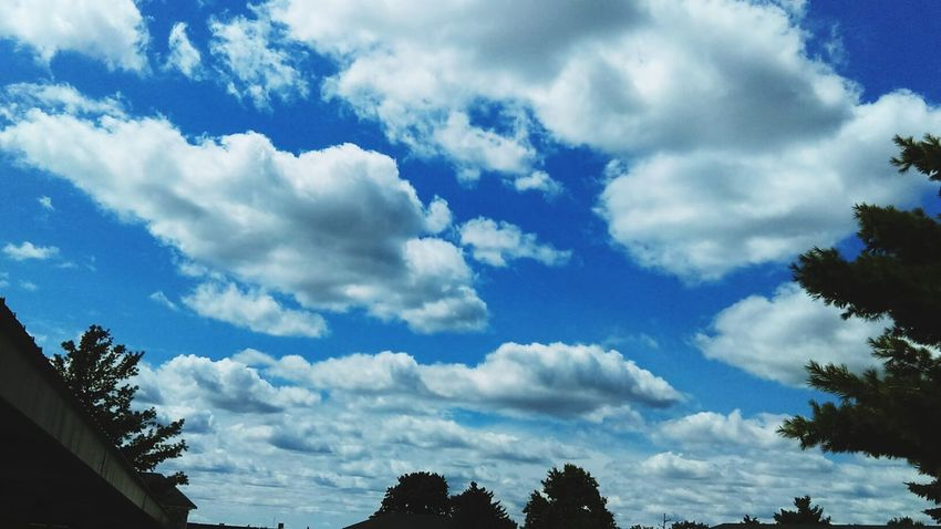 Hanging Out Check This Out Hello World Clouds And Sky Cloud_collection  Blue Sky Trees Tree And Sky Enjoying Life Buatiful_sky After Noon Clouds Pretty♡ Michigan Summer ☀ 2016♡ Enjoying The View Hello World ✌ Amazing Day ♥ Check This Out! Taking Photos Outdoors Cloudporn Skyporn