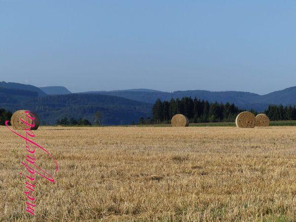 es wird Zeit auf den Stoppelfeldern die Drachen steigen zu lassen (wie früher und selbst gebastelt). 💕💗 Monique52 Stoppelfeld Strohballen Schwarzwald Hochrhein WT-Land