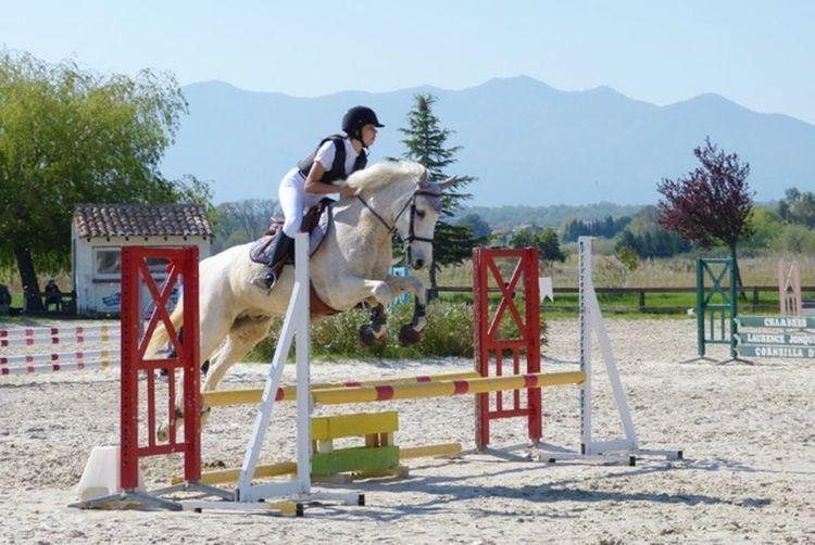 Horseriding Jumping Girl