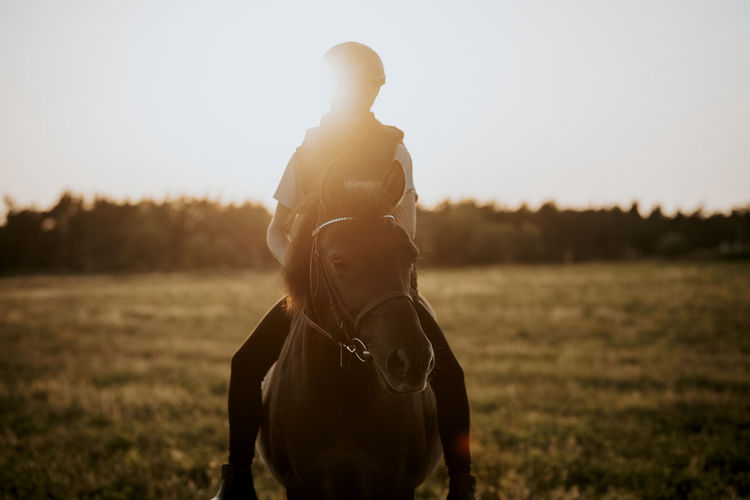 Man riding horse on field against sky during sunset