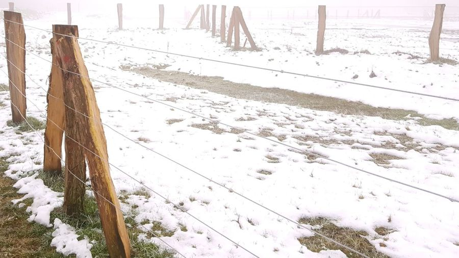 Cold Temperature Winter Snow Outdoors No People Foggy Day Foggy Weather Wooden Posts Fence
