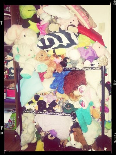my cousin gott a thousand n 1 stuffed animals !