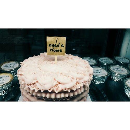 It's a different kind of adoption. Foodgasm Enjoy Cake Dessert