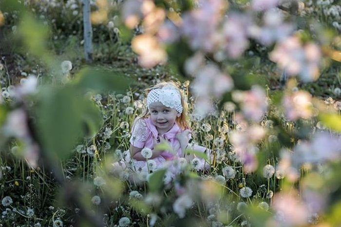 Доминичка беларусь Природа доченька весна сад яблони красота Belarus Nature Photo Spring Daughter Lusienka_pilets Canon Beutiful