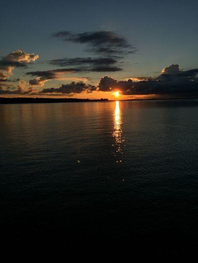 288/365 Sonnenuntergang 🌅 an der Elbe Iphone6 IPhoneography Bilsbekblog Eyeemgermany Photo365 Sorcerer86 Photooftheday Eyeemwedel
