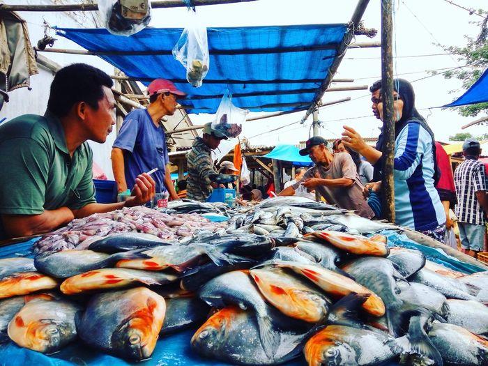Activity Fish Market Branti, Lampung Pasar