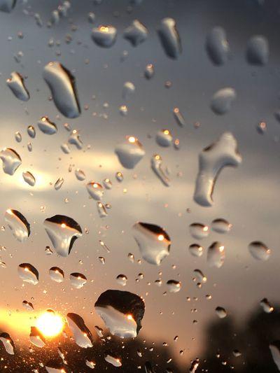 Drop Wet Water