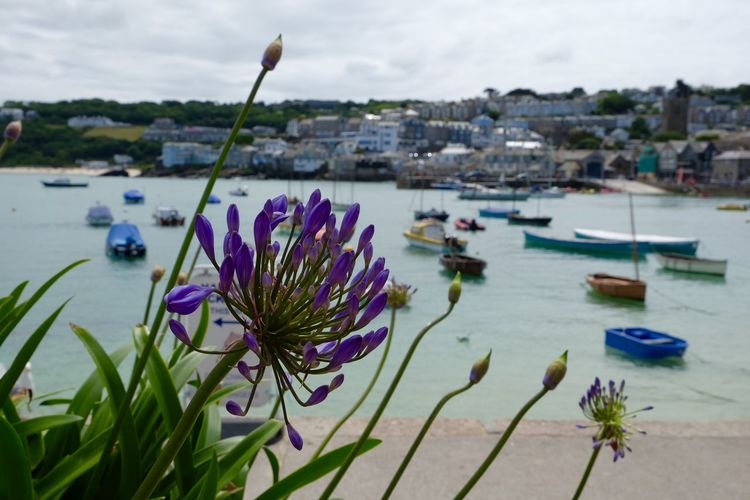 Boat Depth Of Field England Harbour Nature Sea St Ives St Ives Harbour Summer United Kingdom
