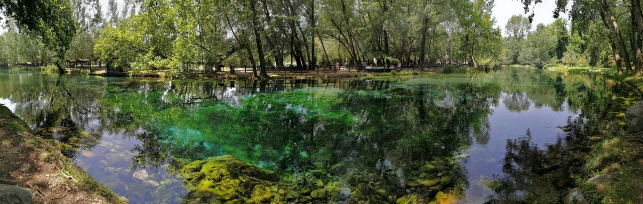 Foto panoramica del Rio Grassano Panoramic View Parco Parco Del Grassano RIO GRASSANO Turismo Beauty In Nature Day Fiume Fondale Green Color Lake Letto Di Fiume Nature No People Ombra E Luce Outdoors Panoramic Landscape Panoramic Photography Paperelle Plant Riflesso Sull'acqua Riva  Tranquility Tree Water