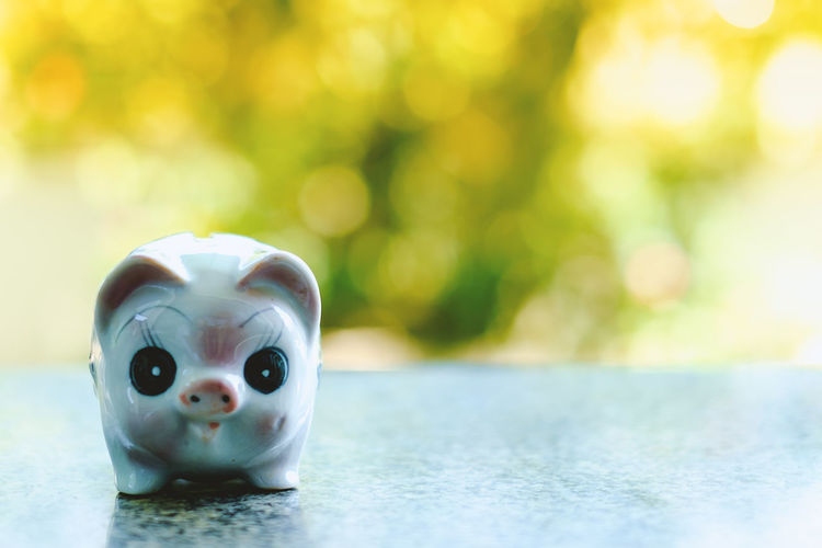Rich Account Bank Cash Coin Cute Finance Focus On Foreground Money Pay Piggy Bank Savings Wealth