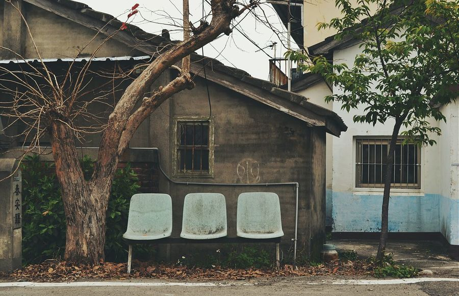 ⑨まぁこの緩さと暖かさが心地よいので、バス停はスルーして🚶てくてく ... Bus Stop Transportation Countryside Old House Architecture Trees Nostalgia Nostalgic Landscape No People Relaxing Streetphotography Street Photography Streetphoto_color Landscapes Eye4photography  EyeEm Best Shots EyeEm Gallery Showcase April Feel The Journey The Street Photographer - 2016 EyeEm Awards Travel Photography Travel 2016.04.01at 臺中市后里區泰安村 Taiwan