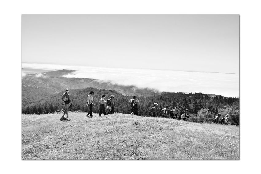 Mount Talmalpais State Park 11 Marin County Hiking Mt. Tam Rock Spring Trail Hiking❤ Scenic Mount Talmalpais Hiking Adventures Bnw_friday_eyeemchallenge Marin Headlands Bnw_dramatic_landscapes San Francisco Bay Monochrome_Photography Monochrome Fog Black & White Black & White Photography Black And White Black And White Collection  Landscape_Collection Landscape_photography Nature Beauty In Nature Nature_collection Marine Layers!