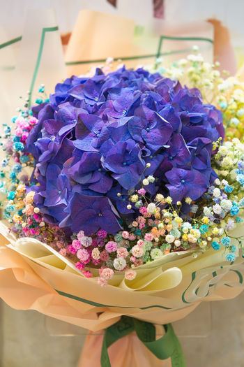 Flower Flowering Plant Purple Freshness Plant Close-up Beauty In Nature Fragility Vulnerability  Multi Colored High Angle View Petal Nature No People Indoors  Flower Head Table Inflorescence Focus On Foreground Flower Arrangement Temptation Bouquet Bunch Of Flowers