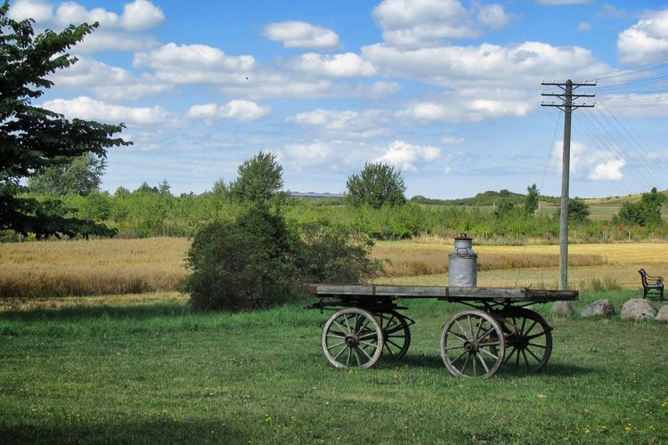 Cart on grassy field against sky