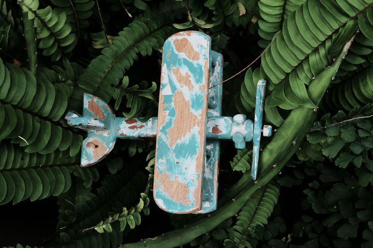 An airplane wooden miniature that crashed on trees.