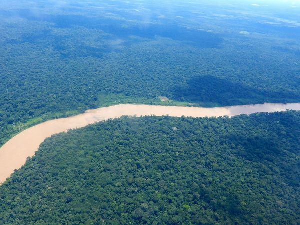 Tambopata National Reserve is a nature reserve in the Peruvian Amazon Basin south of the Madre de Dios River in Tambopata Province's Inambari and Tambopata is my visual finding of this hidden corner of planet earth. #Amazonia Furnace Of Creation Madre De Dios Peru Aerial View Amazon Amazonia Creation Environment Green Color Landscape Nature Puerto Maldonado River Scenics - Nature Tranquil Scene Water The Great Outdoors - 2018 EyeEm Awards