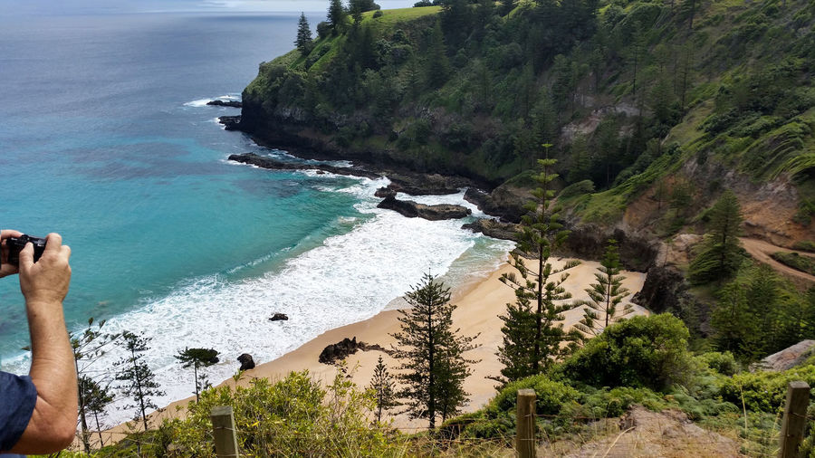 Secluded beach with turquoise water surrounded with beautiful Norfolk pine trees on Norfolk Island. Beach Photography Beach Walk Isolated Beach Norfolk Pines Norfolk Island Ocean View Tranquility Travel Photography Bay Beach Beachphotography Beauty In Nature Cove Day Nature Paradise Scenic View Scenics - Nature Sea Secluded Beach Tranquil Scene Tranquility Travel Destinations Turquoise Water Water