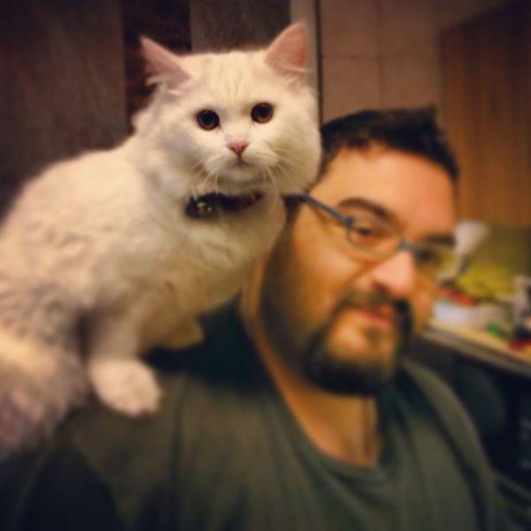 #audrey #perocat #tarek #aati #cat #peroquet Cat Audrey Peroquet Tarek Perocat Aati