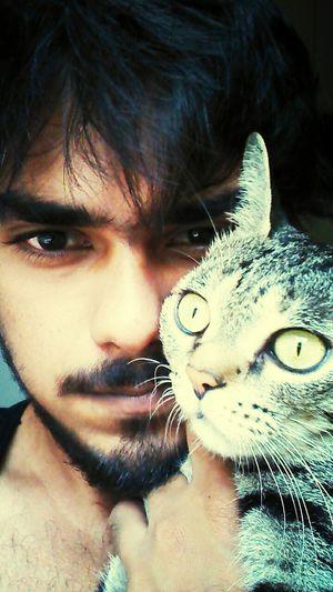Petselfie Crazycat  Pet Photography