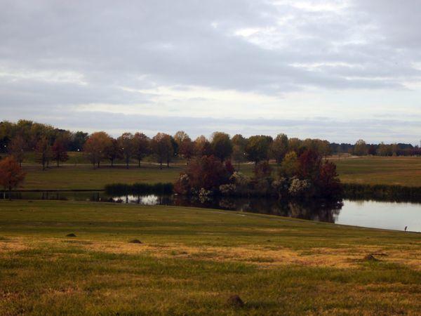 Tree Autumn Agriculture Rural Scene Field Sky Grass Landscape Cloud - Sky