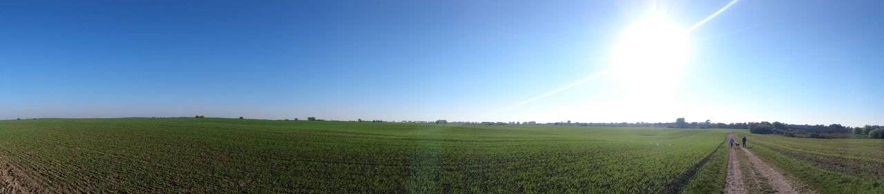 The grass is always greener on the other side. 180° Blue Sky Field Grass Grass Landscape Non-urban Scene Panorama Perspective Rural Scene Scenics Spring Sunshine Tranquil Scene Tranquility Walking