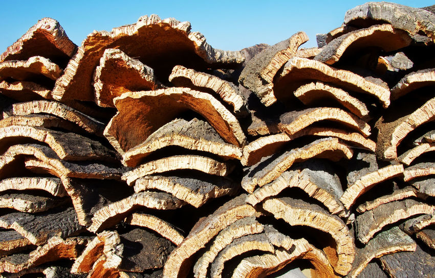 Pile of harvested cork from cork oak trees in south of Portugal Cork Backgrounds Brown Close-up Cork Oak Trees Large Group Of Objects Nature Pattern Stack Textured  Wood Wood - Material