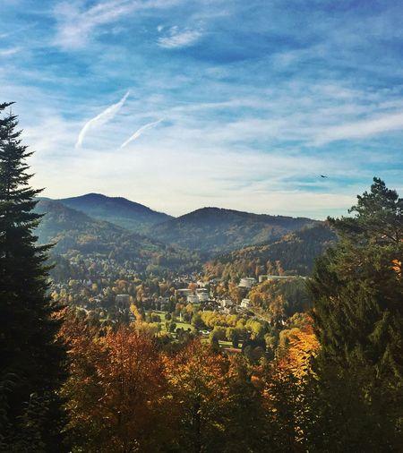 Autumn in the Black Forest Autumn Black Forest Schwarzwald Autumn Colors Tadaa Community EyeEm Nature Lover EyeEm Deutschland Daswasichsehe😊