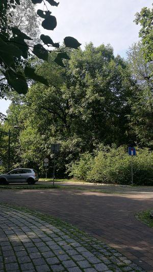 Katowice Park