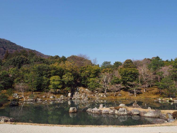 Kyoto Japan Arashiyama Tenryuu-ji Temple Temple Garden Pond Mountain Japanese Style Blue Sky Spring Olympus PEN-F 京都 日本 嵐山 天龍寺 庭園 絶景 青空 池 山 春 寺