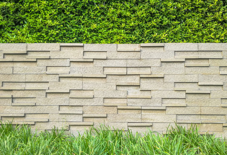 Architecture Backgrounds Brick Walls Brown Construction Day Evergreen Gardening Grass Grass Green Green Color Growth Interior Ivy Lanscape Lush Foliage Nature No People Outdoors Plant Plant Tree Tree Wall